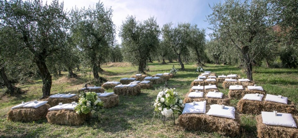 olive grove ceremony