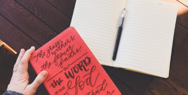 Custom Engraved Bible (ESV Study Bible) - Coral