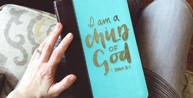 Custom Engraved Bible (KJV) Blue/Brown