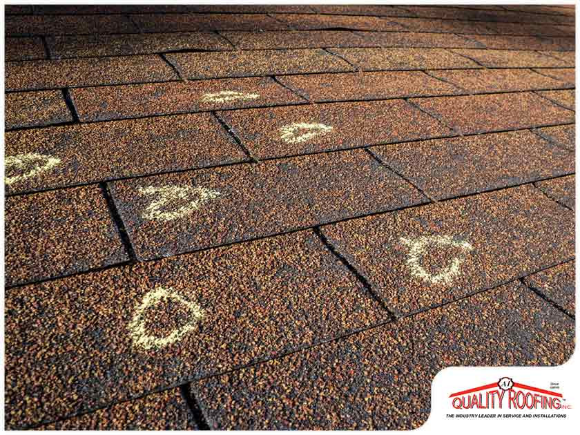 Watch Out for These Common Roof Enemies