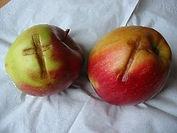 croix-pommes.jpg