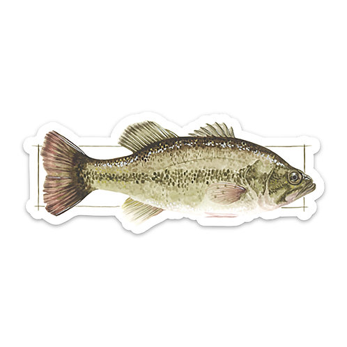 Small Mouth Bass Sticker