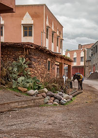 Moroccan Mule 3