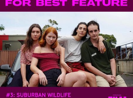 SUBURBAN WILDLIFE SECOND RUNNER UP AUDIENCE AWARD