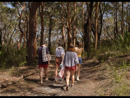 Suburban Wildlife listed in Best Australian Films of the year by The Curb