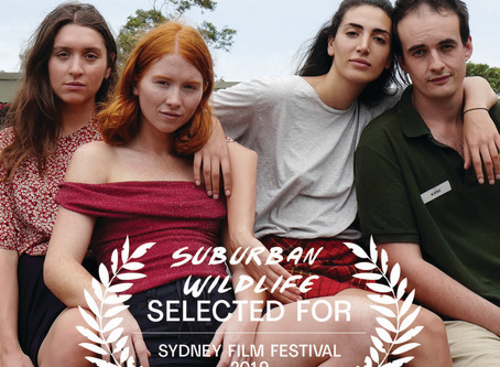 SUBURBAN WILDLIFE SELECTED FOR SYDNEY FILM FESTIVAL 2019
