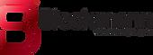Logo bleckmann.png