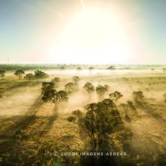 Pantanal - Transpaneira