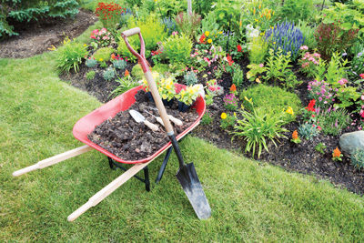Garden-wheelbarrow-IS.jpg