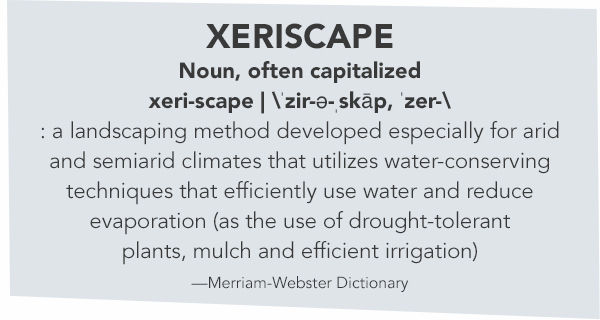 xeriscaping-call-out.jpg