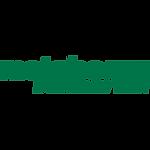 logo-_0005_Metabo-green.png