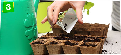 how-to-start-plants-from-seed-step-03.jp