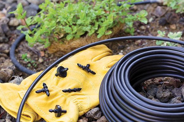 drip-irrigation-article-install.jpg