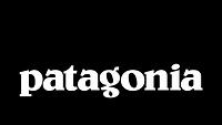Patagonia-Mountain-logo (1).png