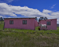 SOUTH-AFRICA-10
