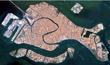 Venezia e un pesce.png