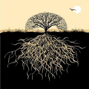 Roots - A Poem