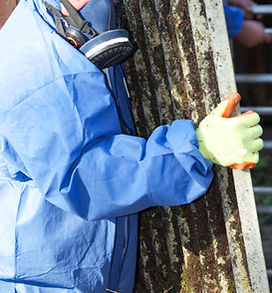 Worker Carrying Asbestos Board