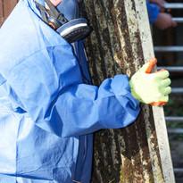 Asbest Kurulu Taşıma İşçi