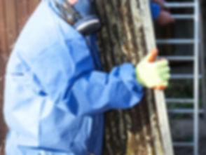 Worker Carrying Asbestos Board