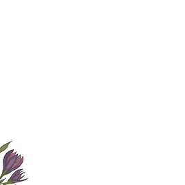 Blume Ausschnitt 2.png