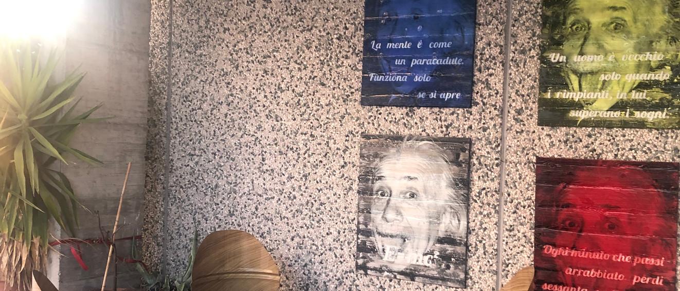 Einstein stile Andy Warhol