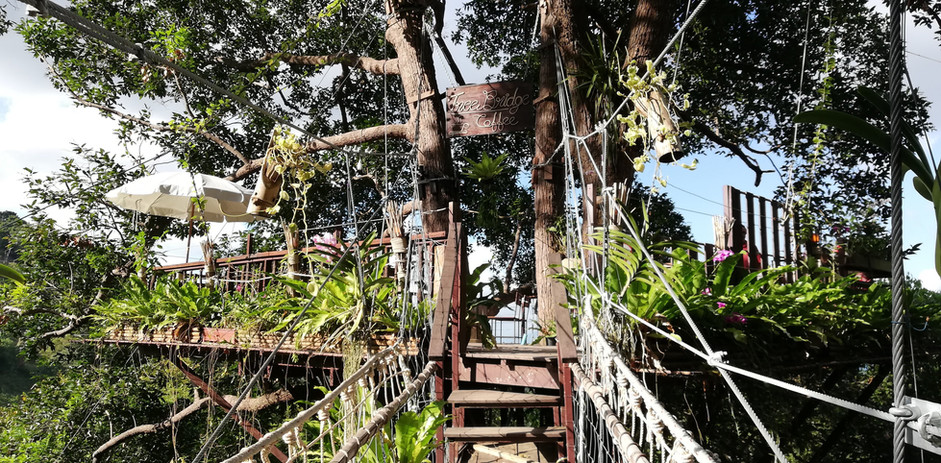 recommendation Koh Samui best places