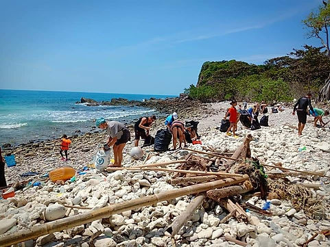 Beach cleaning for an eco friendly respo