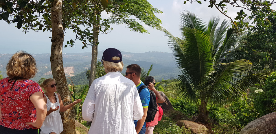Panomaric vue over Koh Samui