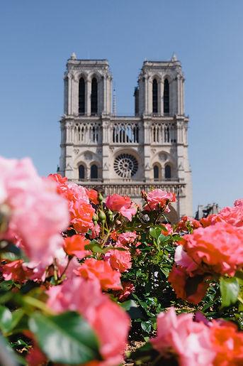 Notre-Dame-pexels-shvets-anna-2564247.jpeg