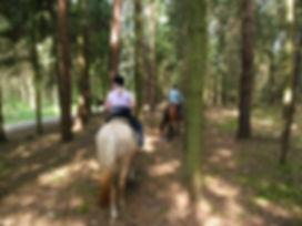 Ausritt und Horsemanshiparbeit 2013 050.