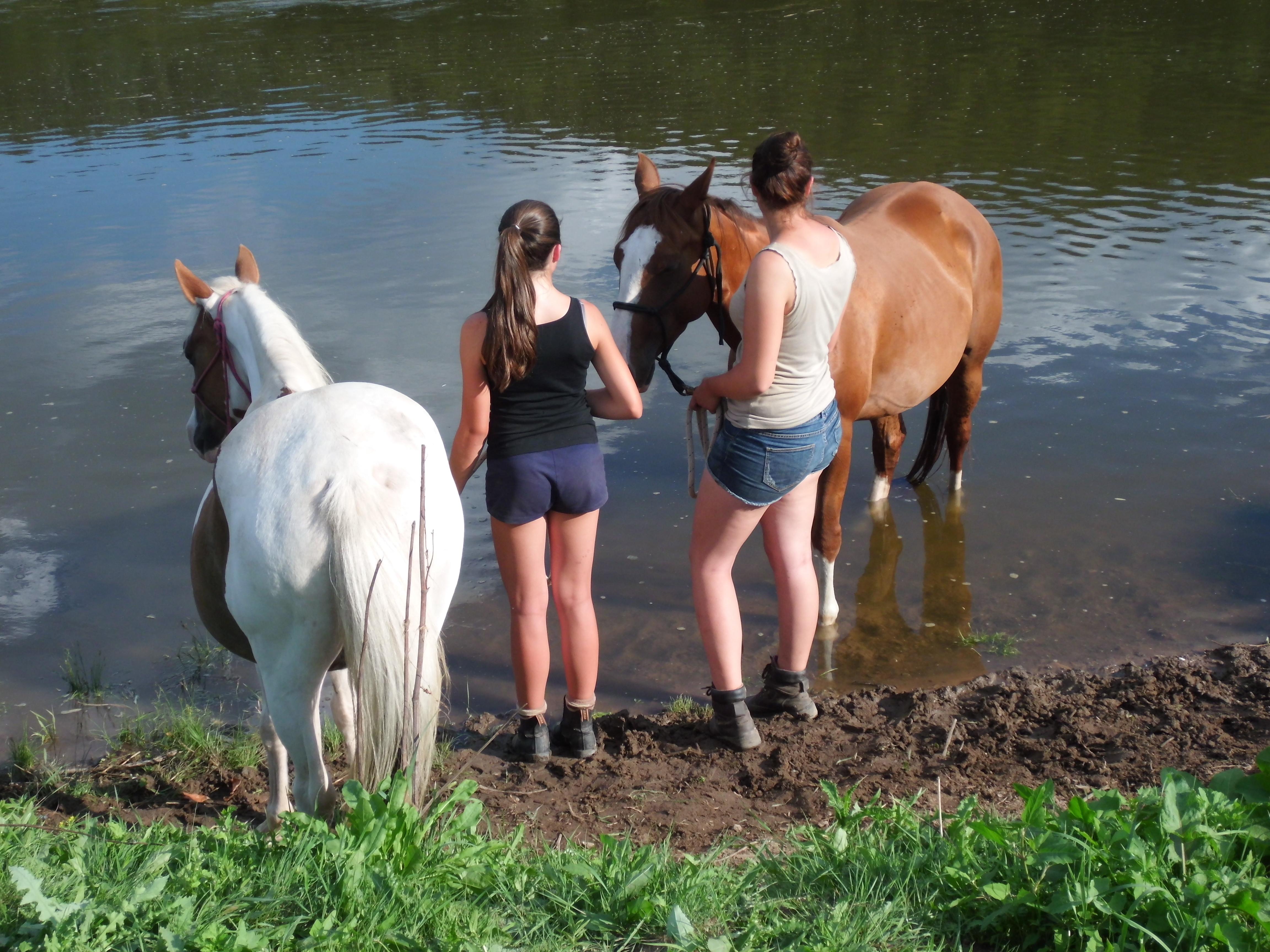 Spaß mit Pferden auf der