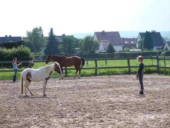 Kids Horsemanshipwoche auf der AHF 021.J