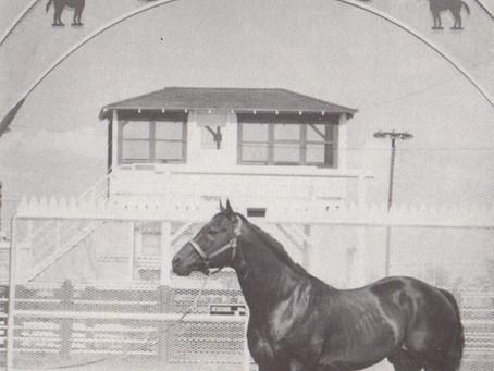 Die Waggoner Ranch