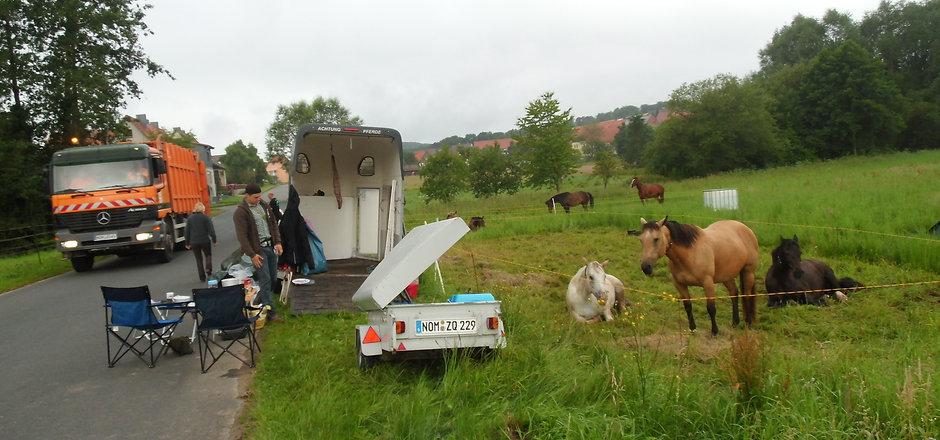 Wanderritt 2014 076.JPG