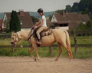 Ausritt und Horsemanshiparbeit 2013 213.