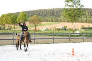 Horsemanshiptraining