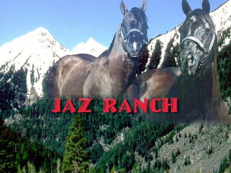 Jaz Ranch – Eine Arbeit aus Liebe