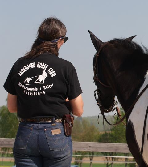 Westernpferde-und Reiterausbildung