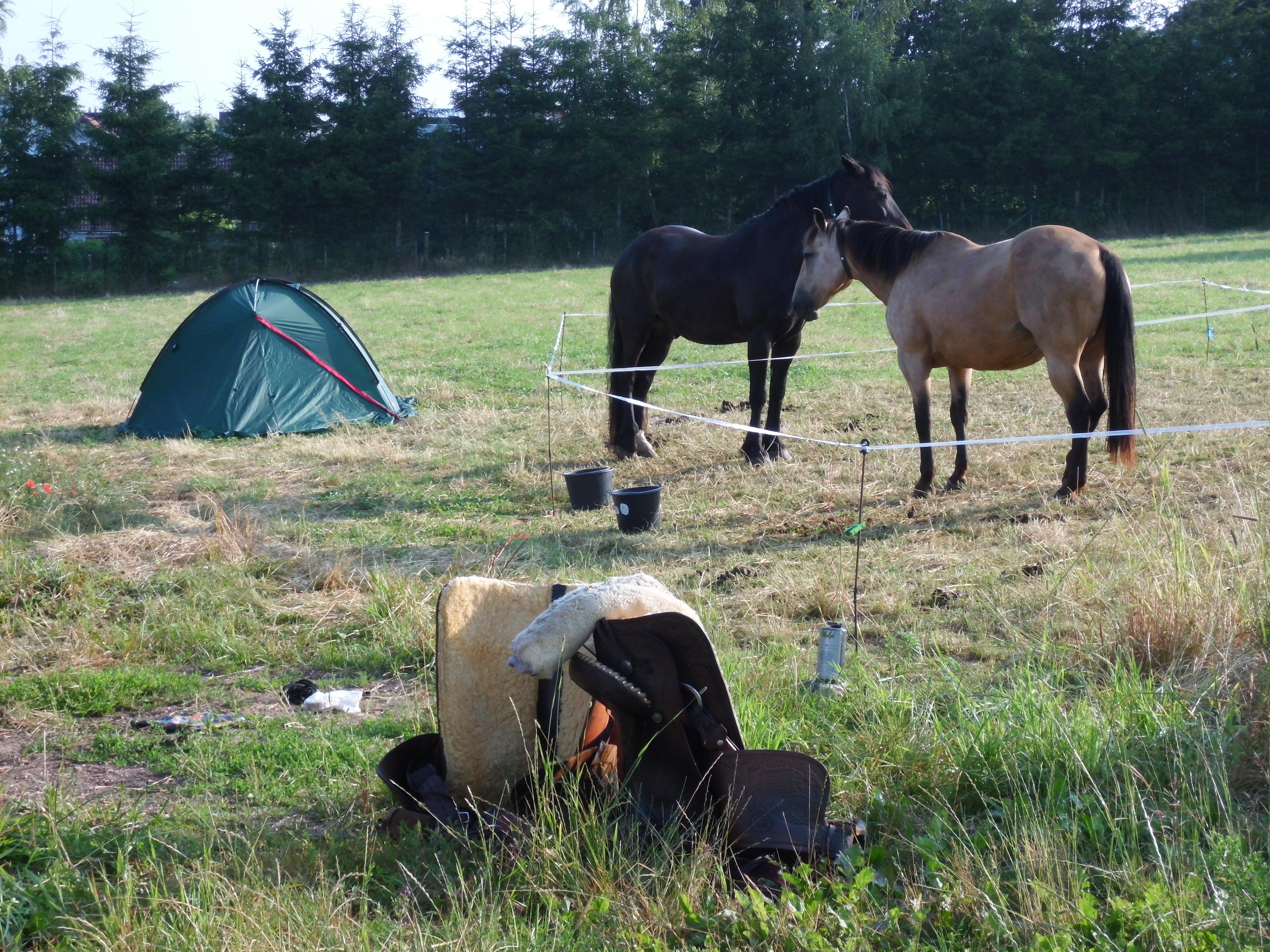 Übernachtung im Zelt auf einem Wanderritt