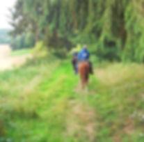 Wanderritt 2012 336.JPG