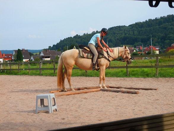 Ausritt und Horsemanshiparbeit 2013 265.