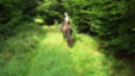 Wanderritt 2012 089.JPG