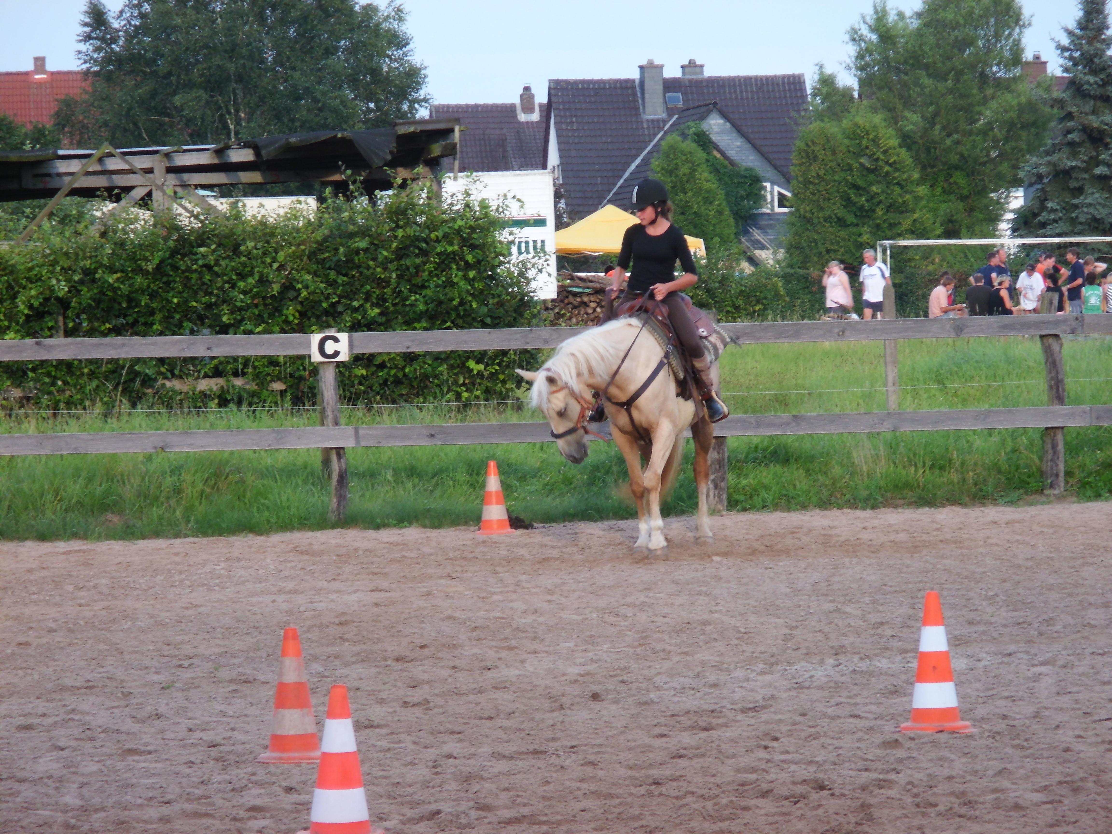 Reiten einer Horsemanshippattern