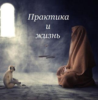 Практика и жизнь. Дмитрий Куприянов