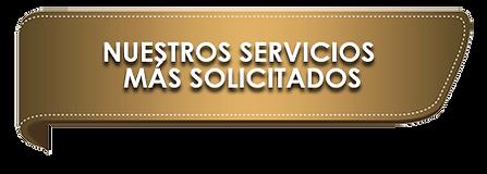 NUESTROS SERVICIOS MAS SOLICITADOS.png