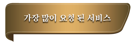 OUR MOST REQUESTED SERVICES kr.png