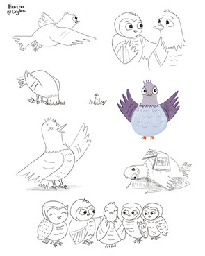 Pigeon and The Owls