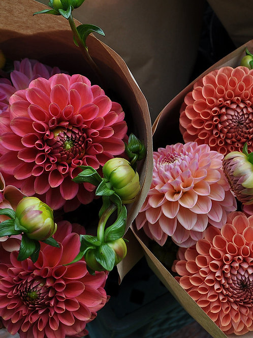 September 4 -Week Flower Subscription