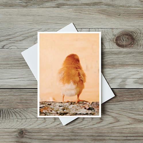 easter cards by Paper Birch Art